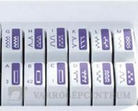 pfaff-select-20-varrogep-1